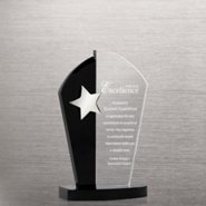 Silver Star with Black Accent Trophy